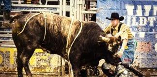 divoky-zapad-bull trading11 analyza