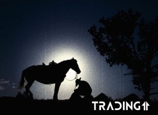 trading11 analyza kovboj