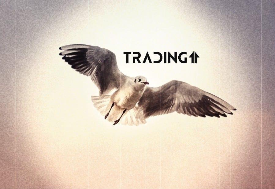 up hore analyza trading11