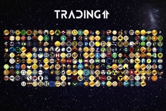 denny update anketa trading11