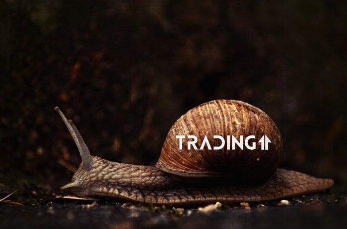 trading11 analyza slimak