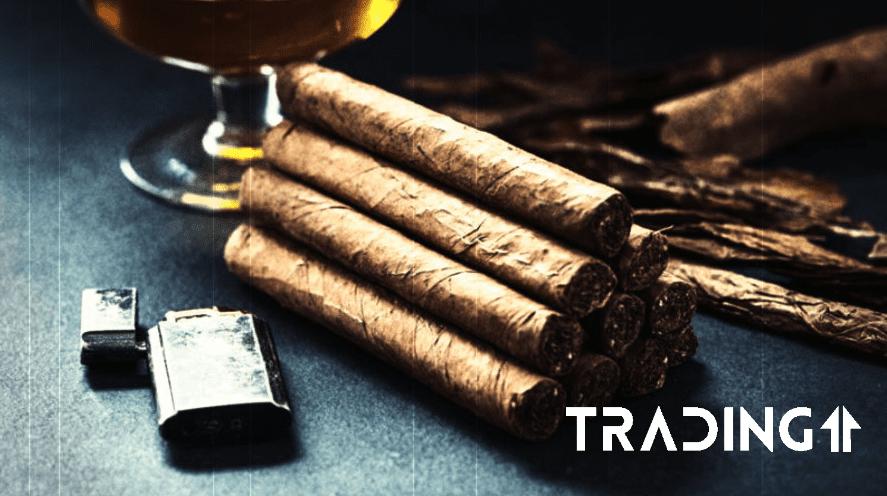 analyza trading11 cigar