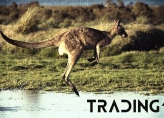 klokan analyza trading11