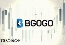 bgogo trading11