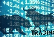 bull bear analyza trading11