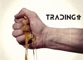 egg analyza trading11