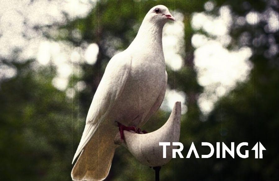 prilezitost trading11 analyza