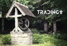 studna analyza trading11 dno