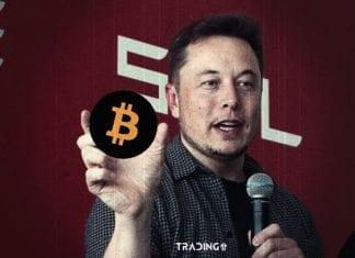 elon musk bitcoin