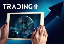 update analýza trading11