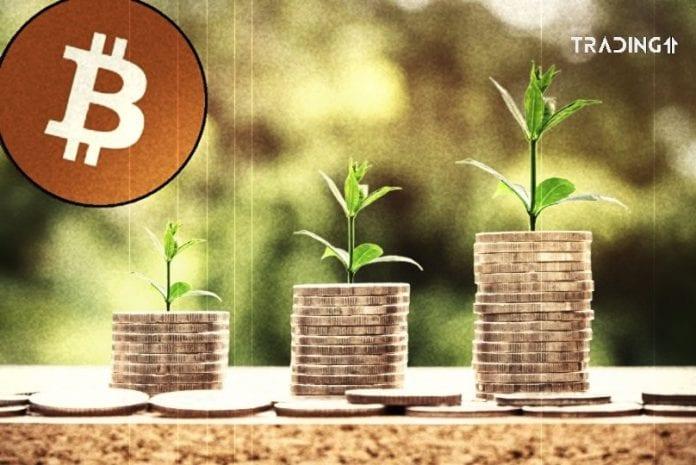 standard 2+1 bitcoin trading11 analyza