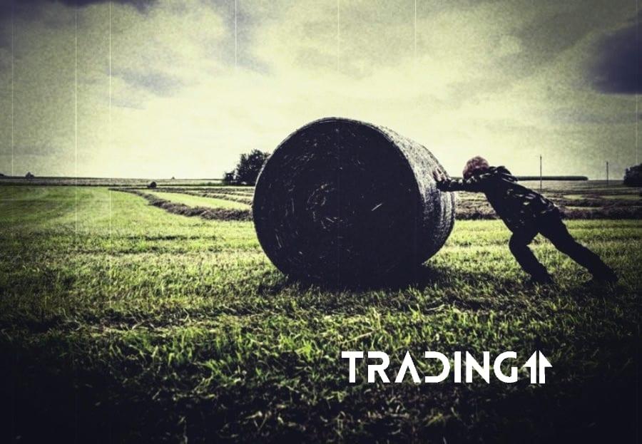 analyza trading11 otočka