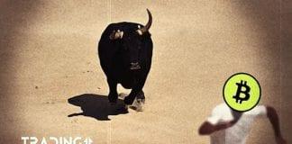 bull btc analýza trading11