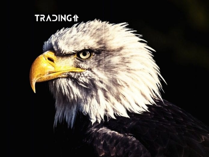 update trading 11 analýza