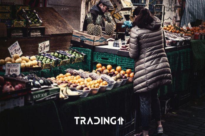 trh obchod update trading11