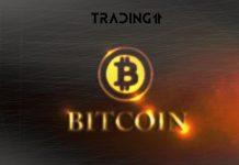 bitcoin analýza trading11