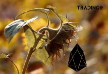 sunflower eos down trading11