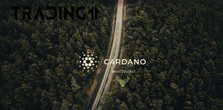 Cardano, ADA, update trading11