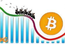 volatilita_bitcoin_analyza_housenkova_draha