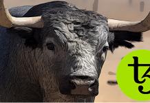 12.02.2020 Tezos (XTZ) je letos téměř v 300% plusu - Kam až ho mohou býci potáhnout?