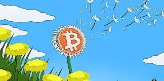 bitcoin trading11 jar zlavy
