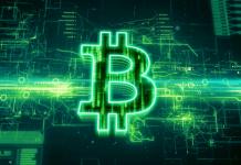 Bitcoin a konec jeho stagnace - Čeká nás zelená budoucnost