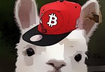 Krypto lamy si myslí, že Bitcoin padne! Je čas nakupovat?